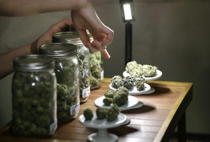 Hearing-Regarding-the-Planning-of-Marijuana-Business-Locations