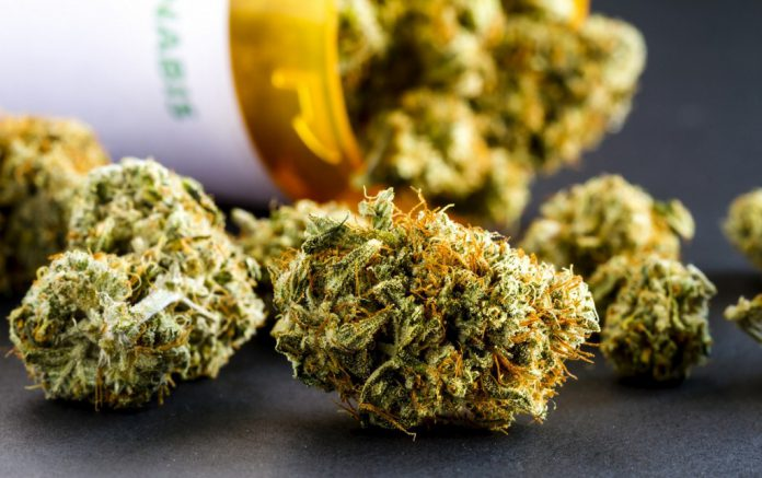 Marijuana-Edible-Cannabis-Regulations-Leafedin
