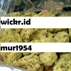 Wickr Id